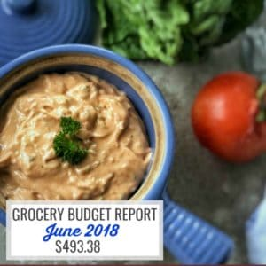 June 2018 Grocery Budget Report
